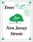 Trees for New Jersey Streets