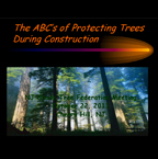 The ABC's of Protecting Trees During Construction
