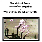 Electricity &amp; Trees&#58;<br>Not Perfect Together
