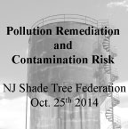 Pollution Remediation and Contamination Risk