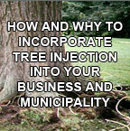 How (and Why) to Incorporate Tree Injection into Your Business and Municipality